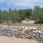 slika sa imanja Batarelo
